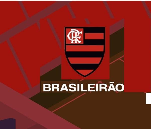 Flamengo_campeao_brasileiro